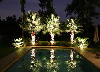 Landscape Lighting By Category