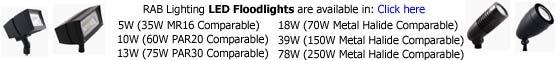 RAB LED Floodlight